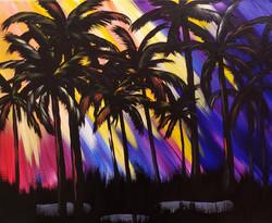 Sunrays through palms