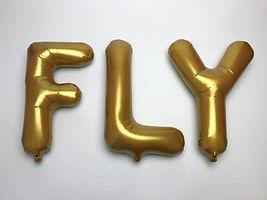 1 GLD FLY.jpg