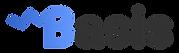 basis_logo_for_light.png