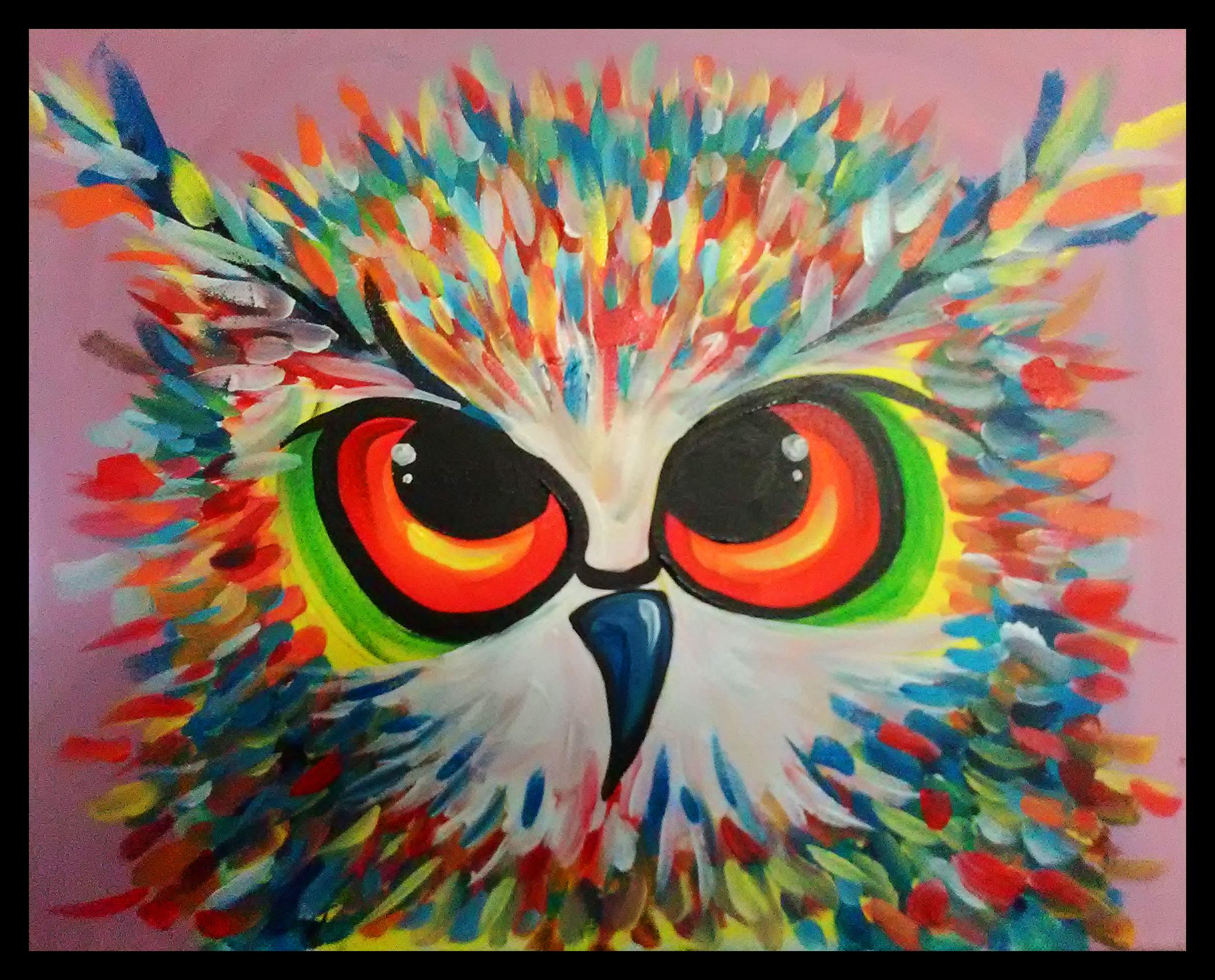 Colourful Owl