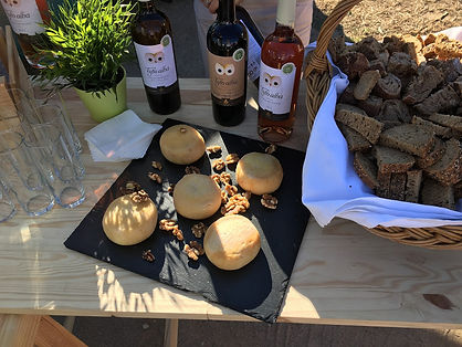 wine & cheese tasting 2.jpg