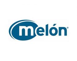 melon-300x240