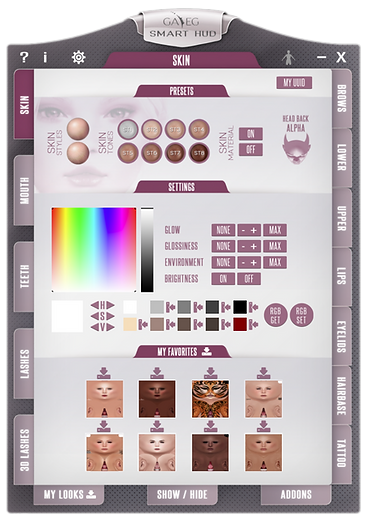 Smart HUD - Skin Tab.png