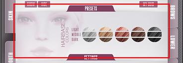 Smart HUD - Hairbase Presets.png