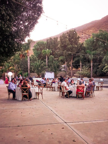Wedding venue dinner seating