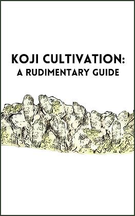 KOJI 101 copy.png