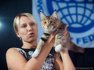 Елена Игнатова эксперт WCF