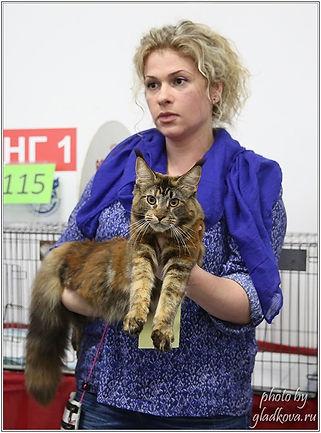 Болдина Светлана Анатольевна и котенок мейн кун Delius Line Dolce Sogno