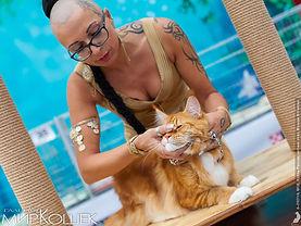 эксперт WCF Елена Мундре и кот мейн кун Delius Line U'Ilarsson