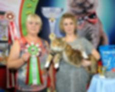эксперт WCF Гудкова Елена