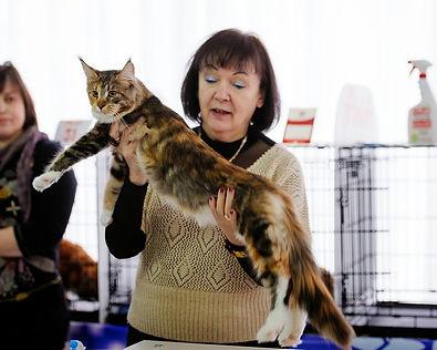 эксперт WCF Беляева Ольга