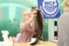 эксперт WCF Терешина Татьяна