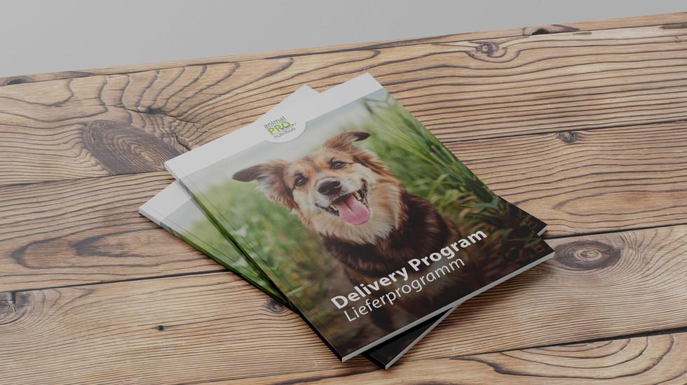Brochure_Mockup_edited.jpg