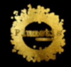 Logo Plumetis Toulouse
