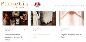 ¨Plumetis, robes de mariée Toulouse   Blog  