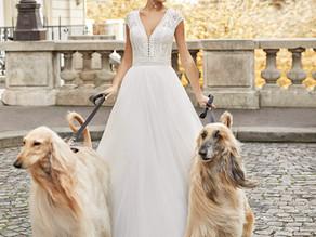 Découvrez les collections de Plumetis, votre boutique de robes de mariée en Haute-Garonne