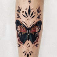 Evies Butterfly .heic
