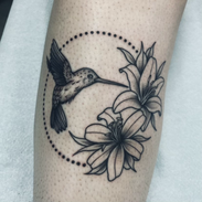 Evies Hummingbird.heic
