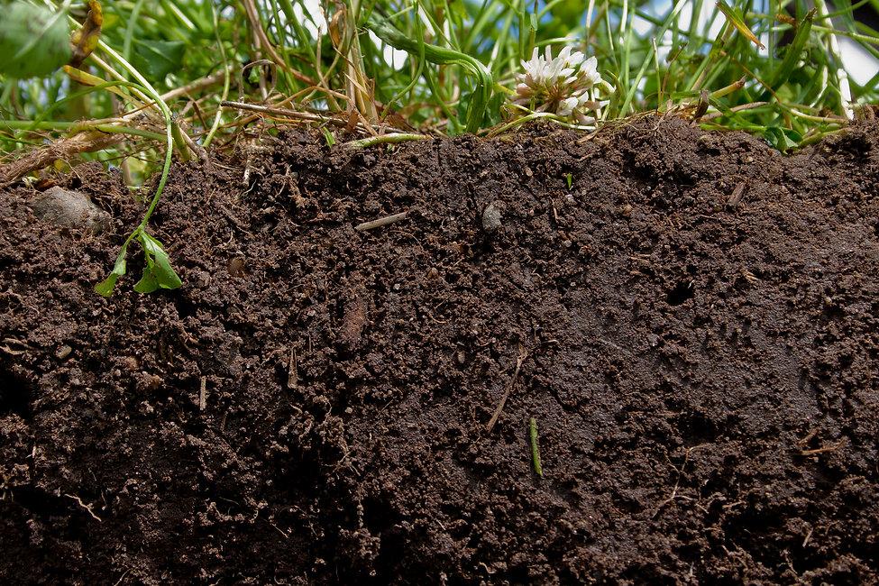 soil cross section.jpg