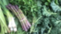 Spring Vegetables for Sale at Four Winds