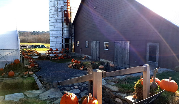 Barn-at-Millers-Crossing-fall-harvest.pn