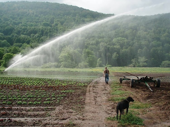 IRRIGATION.png