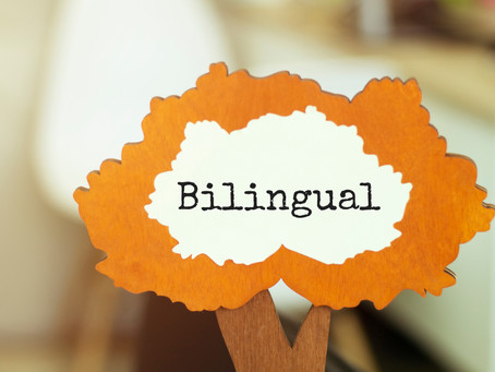 How bilingual social media content helps promote diversity, equality, and inclusion in nonprofits