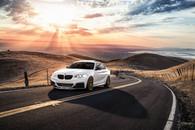 BMW M235i _ AG F510.jpg