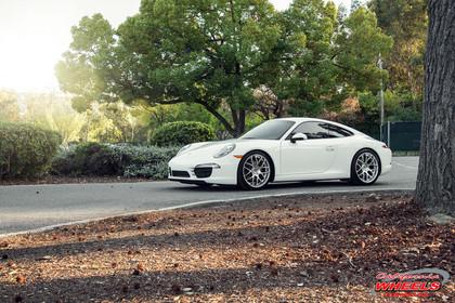 Porsche991carrera _ AG RUGER mesh.jpg