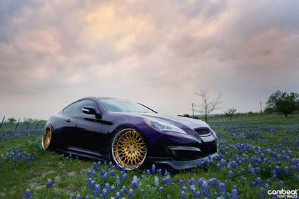 f440-gold-bullion-hyundai-genesis-coupe-