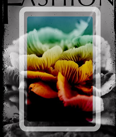 Ekran Resmi 2020-04-05 16.32.13.png