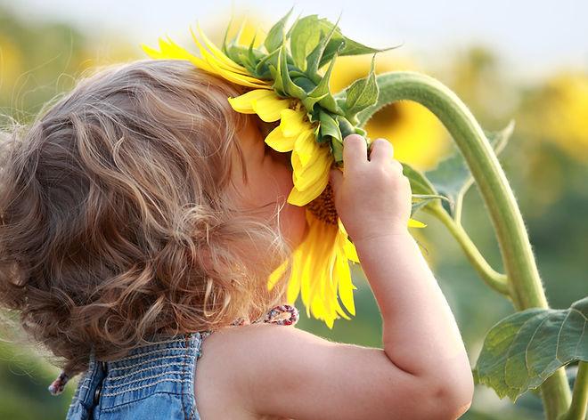 Kid and sunflower.jpg