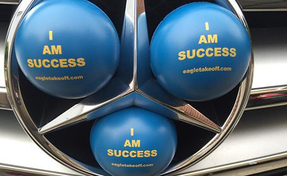 Success Therapeutic Ball