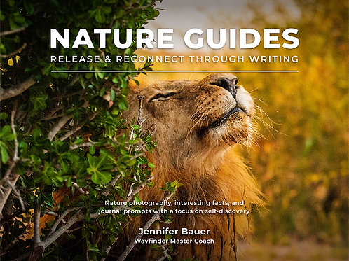 Nature Guides - Release & Reconnect Through Writing