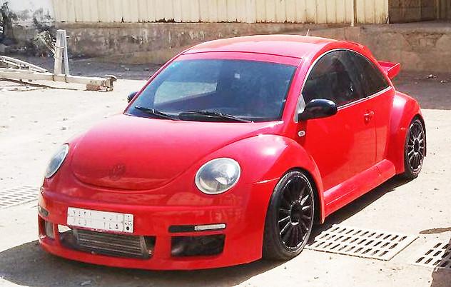 Millennium Beetle Saudi Arabia