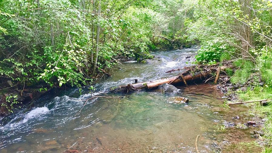 PAL restoration structure asotin creek washington