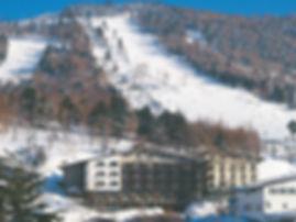 こだま冬の全景(1).jpg