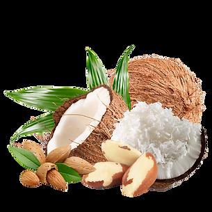 Coconolafoto.png