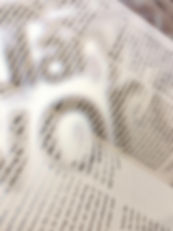 naso.jpg