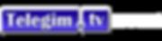 logo-telegim_home.png