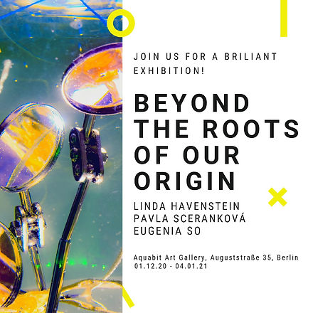 BEYOND THE ROOTS OF OUR ORIGIN_INVITATIO