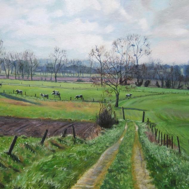 La campagne près du Mont Saint-Michel