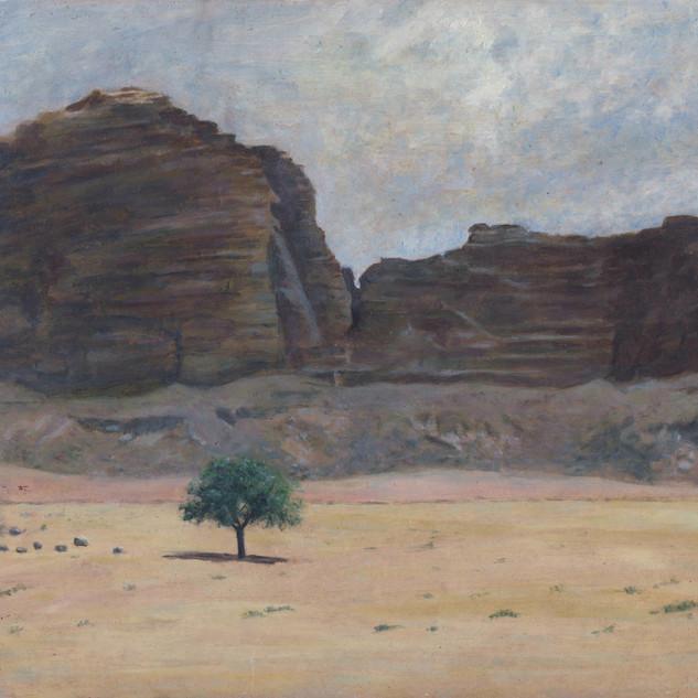 Arbre dans le Wadi Rum (Jordanie)
