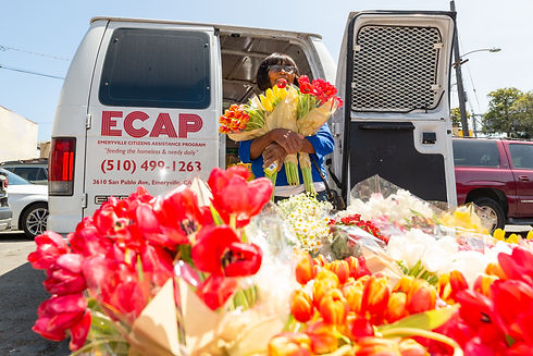 ECAP_0410-9.jpg