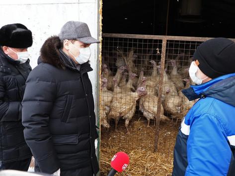 Артём Здунов побывал на предприятиях агрохолдинга «Норов» в Кочкуровском районе