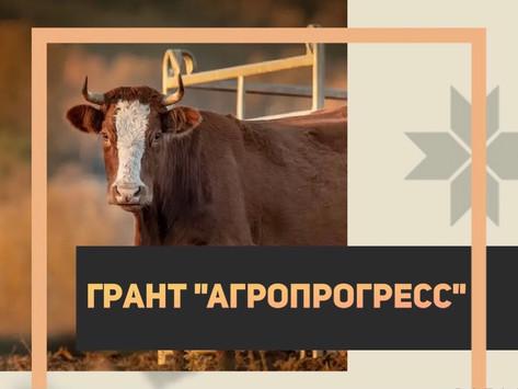 """Новый грант """"Агропрогресс"""" вводится с 1 января 2021 г. для сельхозпроизводителей"""