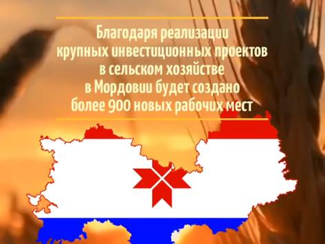 За 2020 год в Мордовии создано более 900 новых рабочих мест