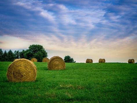 Вступили в силу новые правила по охране труда в сельском хозяйстве