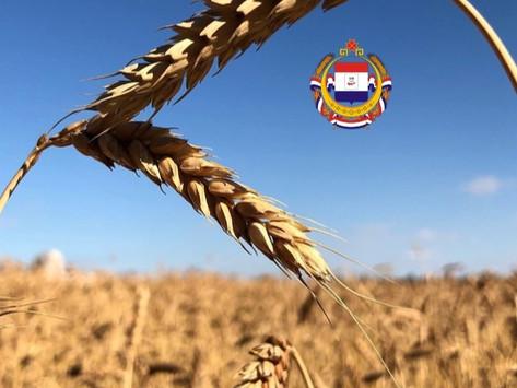 1 млн. 700 тыс. тонн зерна и зернобобовых культур собрали в Республике Мордовия