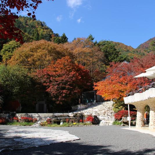 久保田一竹美術館 庭園